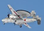 おかげ犬さんが、三沢飛行場で撮影した航空自衛隊 E-2C Hawkeyeの航空フォト(写真)