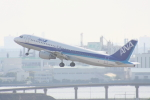 やつはしさんが、羽田空港で撮影した全日空 A320-211の航空フォト(写真)
