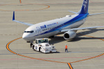 鈴鹿@風さんが、中部国際空港で撮影した全日空 737-881の航空フォト(写真)