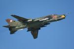 Tomo-Papaさんが、ミリテール・ド・ペイエルヌ飛行場で撮影したポーランド空軍 Su-22M4の航空フォト(写真)