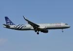 じーく。さんが、成田国際空港で撮影した中国東方航空 A321-211の航空フォト(写真)
