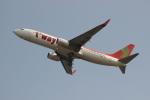 uhfxさんが、関西国際空港で撮影したティーウェイ航空 737-8GJの航空フォト(写真)