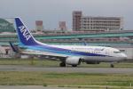 幹ポタさんが、福岡空港で撮影した全日空 737-781の航空フォト(写真)