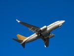 おっつんさんが、羽田空港で撮影した南山公務 737-7ZH BBJの航空フォト(写真)