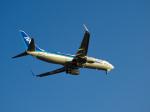 おっつんさんが、羽田空港で撮影した全日空 737-881の航空フォト(写真)