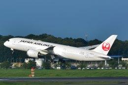 shining star ✈さんが、成田国際空港で撮影した日本航空 787-8 Dreamlinerの航空フォト(写真)