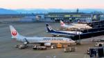 Ocean-Lightさんが、中部国際空港で撮影した日本航空 737-846の航空フォト(写真)