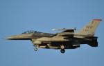 おかげ犬さんが、三沢飛行場で撮影したアメリカ空軍 F-16CM-50-CF Fighting Falconの航空フォト(写真)
