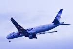 パンダさんが、成田国際空港で撮影したエジプト航空 777-36N/ERの航空フォト(写真)