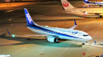Ocean-Lightさんが、中部国際空港で撮影した全日空 737-881の航空フォト(写真)