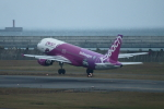 kij niigataさんが、新潟空港で撮影したピーチ A320-214の航空フォト(写真)