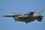 おかげ犬さんが、三沢飛行場で撮影したアメリカ空軍 F-16DM-50-CF Fighting Falconの航空フォト(写真)