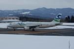 marariaさんが、青森空港で撮影したスカイウィングス・アジア・エアラインズ A320-212の航空フォト(写真)