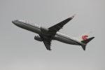 uhfxさんが、関西国際空港で撮影した中国国際航空 737-89Lの航空フォト(写真)