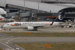 uhfxさんが、関西国際空港で撮影した山東航空 737-85Nの航空フォト(写真)