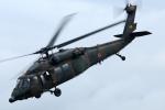 sepia2016さんが、木更津飛行場で撮影した陸上自衛隊 UH-60JAの航空フォト(写真)