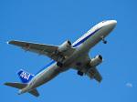 おっつんさんが、羽田空港で撮影した全日空 A320-211の航空フォト(写真)