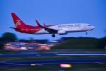 パンダさんが、成田国際空港で撮影した深圳航空 737-87Lの航空フォト(写真)