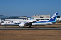 らむえあたーびんさんが、伊丹空港で撮影した全日空 787-9の航空フォト(飛行機 写真・画像)