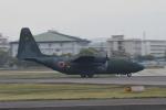 POMさんが、名古屋飛行場で撮影した航空自衛隊 C-130H Herculesの航空フォト(写真)