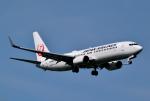 hirohiro77さんが、新千歳空港で撮影した日本航空 737-846の航空フォト(写真)