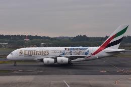 ユウイチ22さんが、成田国際空港で撮影したエミレーツ航空 A380-861の航空フォト(写真)