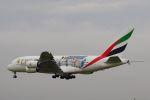 ladyinredさんが、成田国際空港で撮影したエミレーツ航空 A380-861の航空フォト(写真)