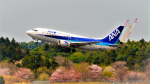 Ocean-Lightさんが、成田国際空港で撮影したANAウイングス 737-54Kの航空フォト(写真)
