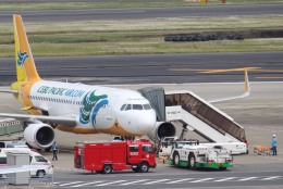 パピヨンさんが、羽田空港で撮影したセブパシフィック航空 A320-214の航空フォト(写真)