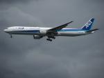 Tき/九州急行さんが、羽田空港で撮影した全日空 777-381の航空フォト(写真)