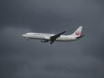 Tき/九州急行さんが、羽田空港で撮影した日本航空 737-846の航空フォト(写真)