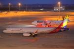 じゃりんこさんが、中部国際空港で撮影したアシアナ航空 A321-231の航空フォト(写真)