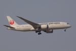 じゃりんこさんが、成田国際空港で撮影した日本航空 787-8 Dreamlinerの航空フォト(写真)