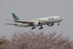 じゃりんこさんが、成田国際空港で撮影したパキスタン国際航空 777-240/ERの航空フォト(写真)