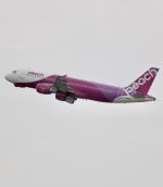 ザキヤマさんが、福岡空港で撮影したピーチ A320-214の航空フォト(写真)