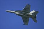 tsubameさんが、岩国空港で撮影したアメリカ海軍 F/A-18F Super Hornetの航空フォト(写真)