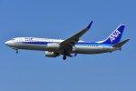 islandsさんが、成田国際空港で撮影した全日空 737-881の航空フォト(写真)