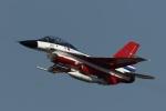 なぞたびさんが、名古屋飛行場で撮影した航空自衛隊 F-2Bの航空フォト(写真)