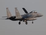 自由猫さんが、小松空港で撮影した航空自衛隊 F-15DJ Eagleの航空フォト(写真)