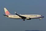 HISAHIさんが、福岡空港で撮影したチャイナエアライン 737-809の航空フォト(写真)