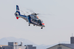 noriphotoさんが、札幌飛行場で撮影したオールニッポンヘリコプター AS365N2 Dauphin 2の航空フォト(写真)