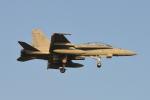 350JMさんが、厚木飛行場で撮影したアメリカ海兵隊 F/A-18D Hornetの航空フォト(写真)