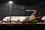 ユウイチ22さんが、成田国際空港で撮影した日本航空 787-8 Dreamlinerの航空フォト(写真)