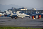 tsubasa0624さんが、岩国空港で撮影したアメリカ海軍 EA-18G Growlerの航空フォト(飛行機 写真・画像)