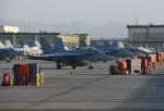 tsubasa0624さんが、岩国空港で撮影したアメリカ海軍 F/A-18F Super Hornetの航空フォト(飛行機 写真・画像)