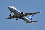 tsubasa0624さんが、岩国空港で撮影した全日空 A320-211の航空フォト(写真)