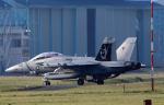 チャーリーマイクさんが、厚木飛行場で撮影したアメリカ海軍 EA-18G Growlerの航空フォト(写真)