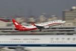 TAOTAOさんが、上海虹橋国際空港で撮影した上海航空 737-8-MAXの航空フォト(写真)