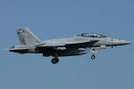 =JAかみんD=さんが、厚木飛行場で撮影したアメリカ海軍 F/A-18F Super Hornetの航空フォト(写真)