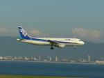 うすさんが、関西国際空港で撮影した全日空 A320-211の航空フォト(写真)